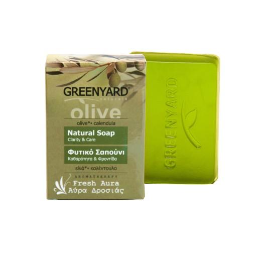 Φυτικό Σαπούνι δροσερή αύρα Greenyard