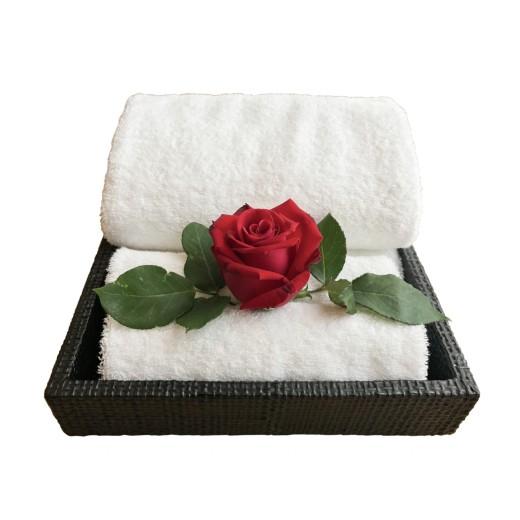 Πετσέτα κομμωτηρίου-spa λευκή 50X90